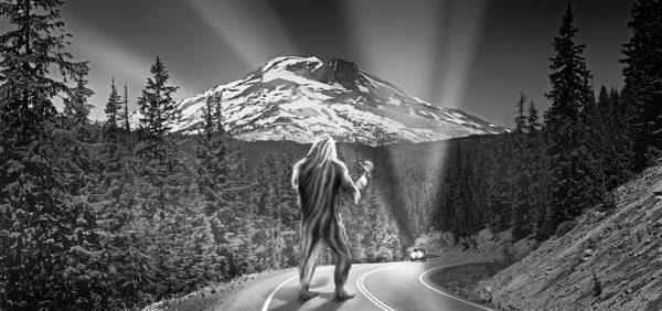 Wall Art - Photograph - Rear View Of A Sasquatch Hitchhiking by Panoramic Images