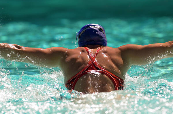 Wall Art - Photograph - Rear View Of A Woman Swimming by Panoramic Images