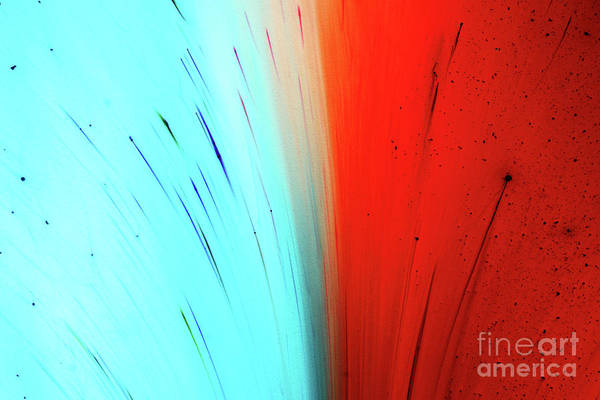 Wall Art - Photograph - Red And Blue Dyes Exploding In Liquid by Mimi  Haddon