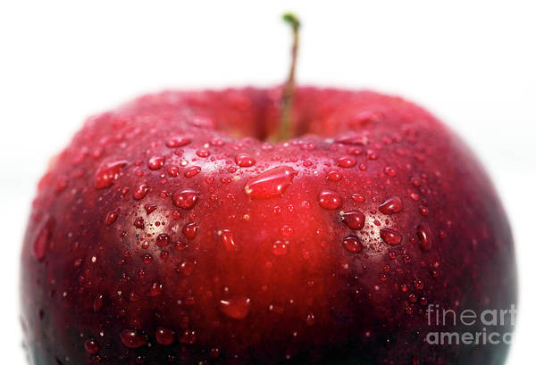 Photograph - Red Apple Top Profile by John Rizzuto