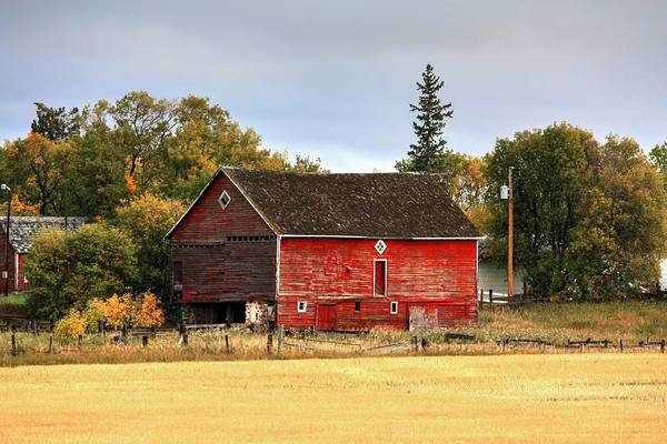Photograph - Red Barn Fall by David Matthews