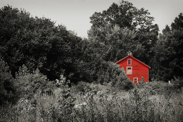 Photograph - Red Barn by Michelle Wermuth