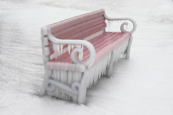 Photograph - Red Bench Encased In Ice by David T Wilkinson