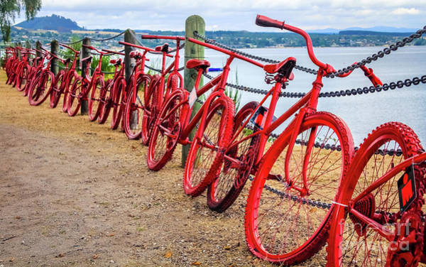 Photograph - Red Bikes At Lake Taupo, New Zealand by Lyl Dil Creations