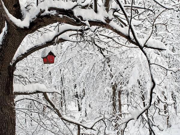 Digital Art - Red Birdhouse by R  Allen Swezey