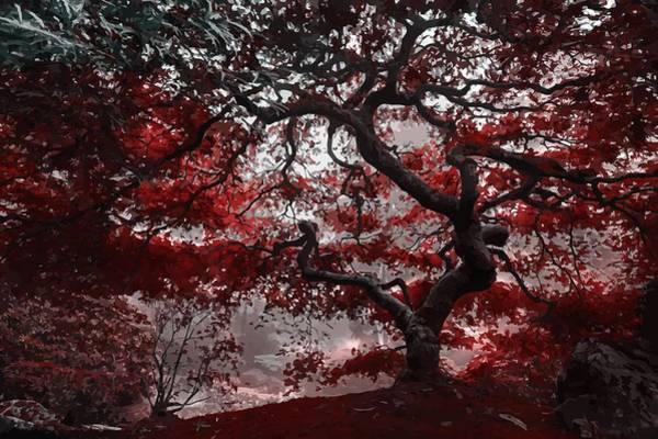 Mixed Media - Red Blossom Tree by Art Shack
