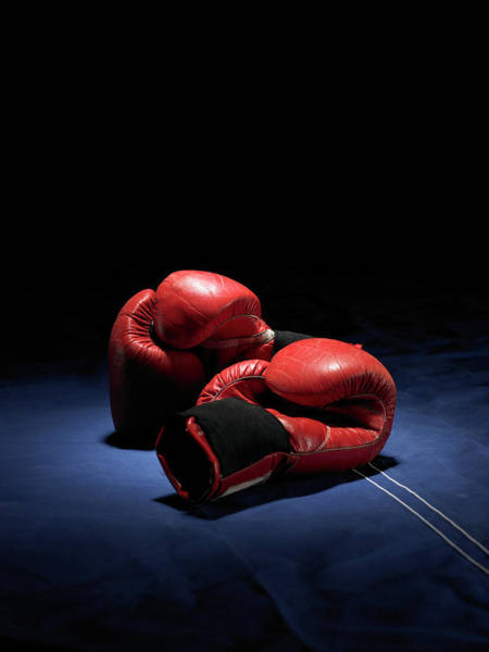 Boxing Photograph - Red Boxing Gloves by Phil Ashley