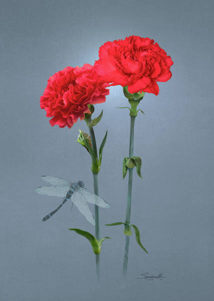 Wall Art - Digital Art - Carnations Of Eden by Spadecaller