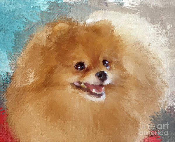Digital Art - Red Carpet Pomeranian by Lois Bryan