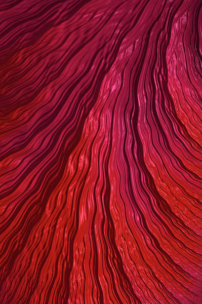 Digital Art - Red Cascade by Steve Purnell