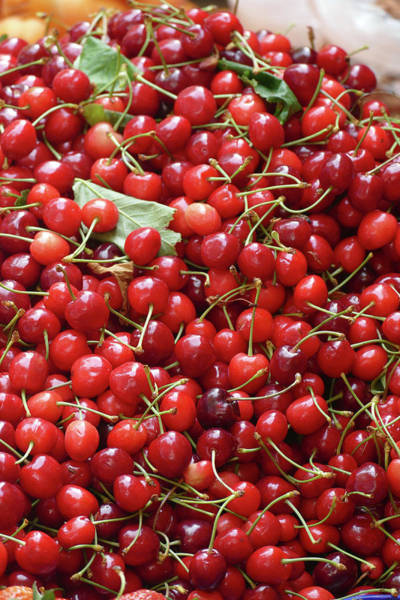 Photograph - Red Cherries For Sale S At The Green Market by Steve Estvanik