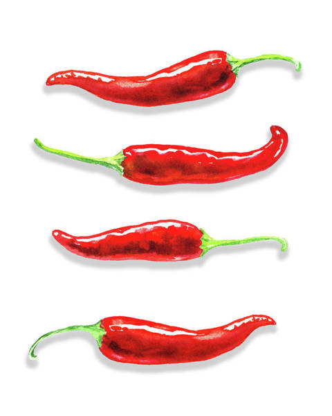 Painting - Red Chili Peppers Watercolor  by Irina Sztukowski