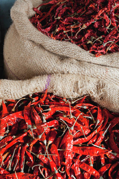 Photograph - Red Chilli by Maria Heyens