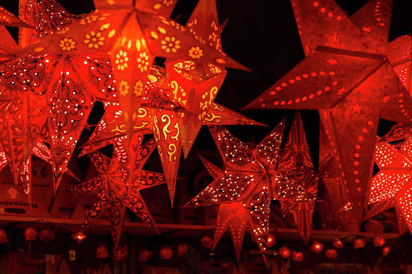 Wall Art - Photograph - Red Christmas Stars In Florence by Iris Richardson