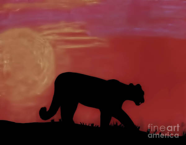 Drawing - Red - Cougar - Sunset by D Hackett