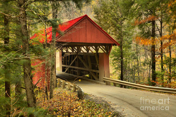 Photograph - Red Covered Bridge In The Forest by Adam Jewell