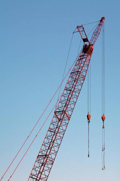 Wall Art - Photograph - Red Crane Vertical by Todd Klassy