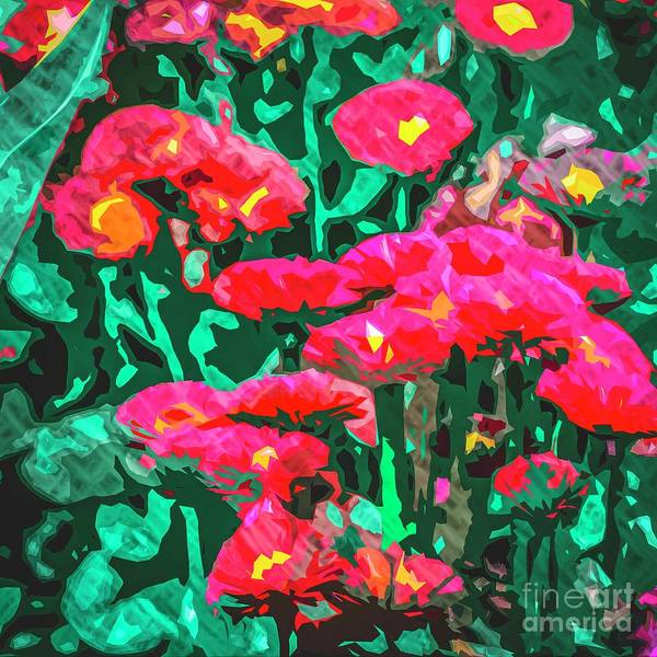Photograph - Red Daisies by Nigel Dudson
