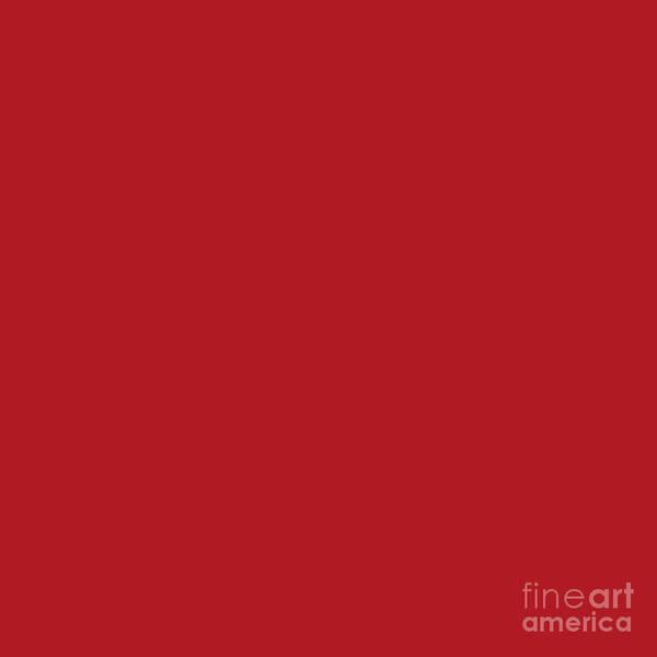 Digital Art - Red Dark Raspberry by Sharon Mau