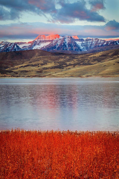 Red Deer Photograph - Red Dawn On Timp by Johnny Adolphson