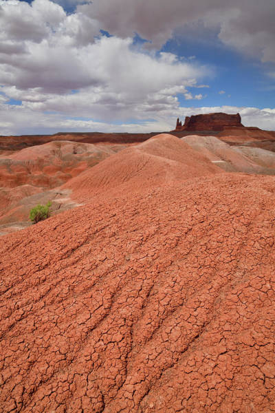 Photograph - Red Dunes Of Arizona Along 191 Near Chinle by Ray Mathis
