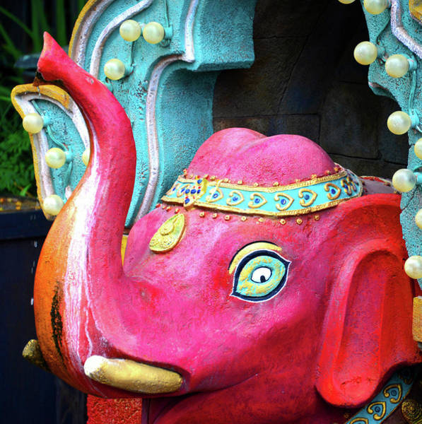 Wall Art - Photograph - Red Elephant by David Lee Thompson