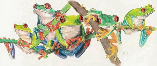 Mixed Media - Red-eyed Tree Frog Bunch by Barbara Keith