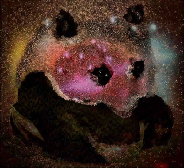 Digital Art - Red Face Of The Panda Universe by Mario Carini