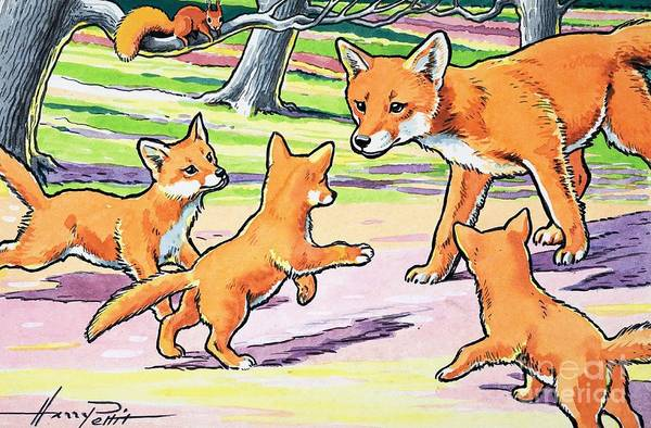 Wall Art - Painting - Red Fox And Her Cubs by Harry M Pettit