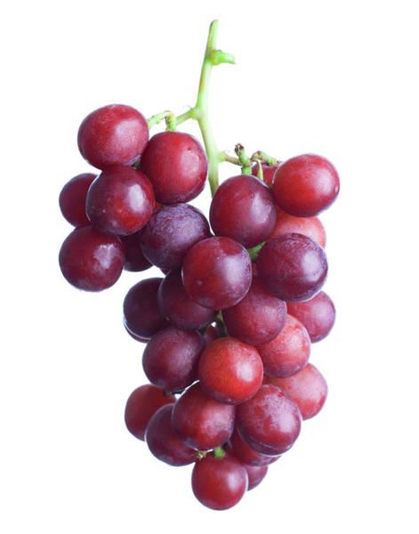 Ripe Grapes Photograph - Red Grapes by Rickszczechowski