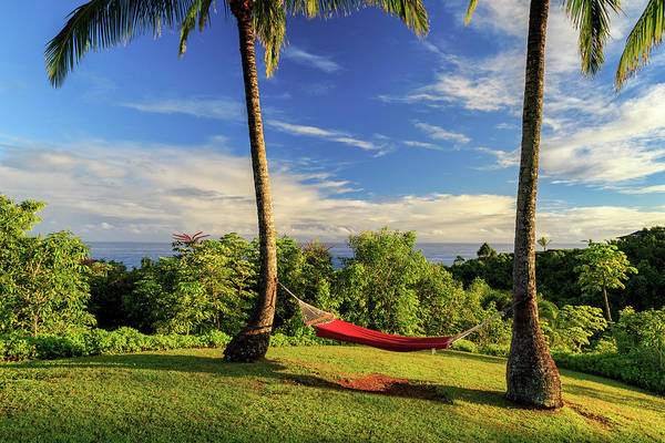 Photograph - Red Hammock In Hawaii by James Eddy