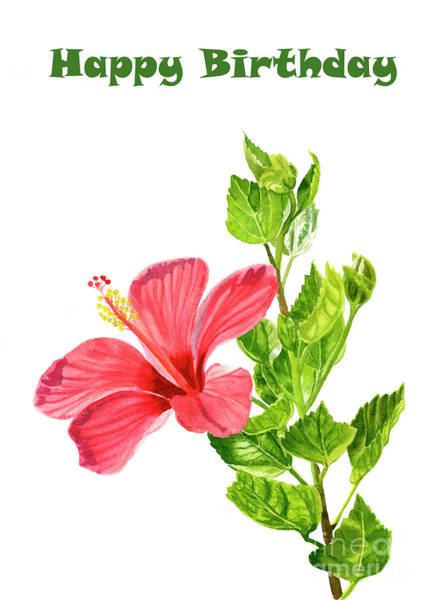 Wall Art - Painting - Red Hibiscus Birthday Card 2 by Sharon Freeman