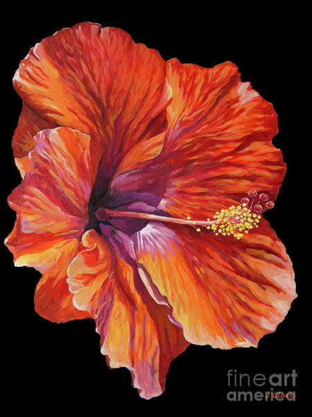 Wall Art - Painting - Red Hibiscus On Black by John Clark