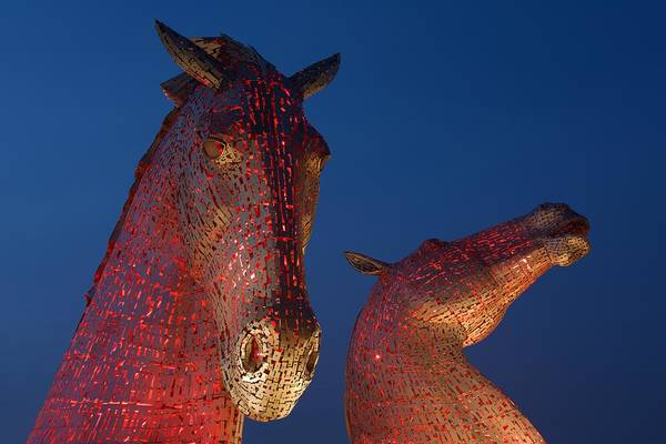 Photograph - Red Kelpies by Stephen Taylor