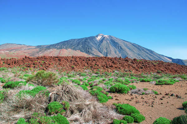 Photograph - Red Lava Field In Front Of Mount Teide by Sun Travels