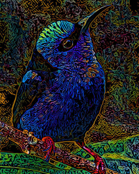Wall Art - Digital Art - Red-legged Honeycreeper by Ernest Smith
