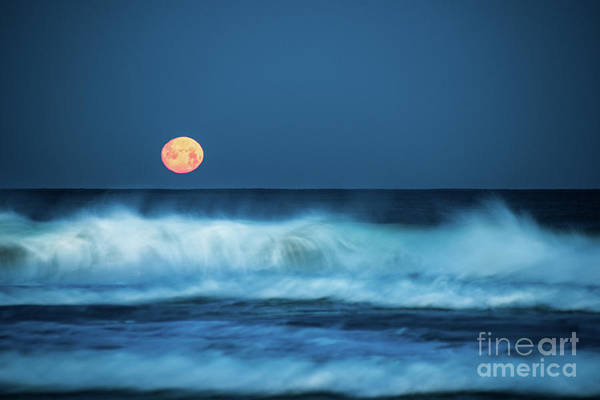 Photograph - Red Moon by Hannes Cmarits