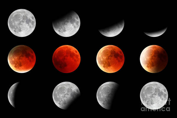 Photograph - Red Moon Turning by Benny Marty