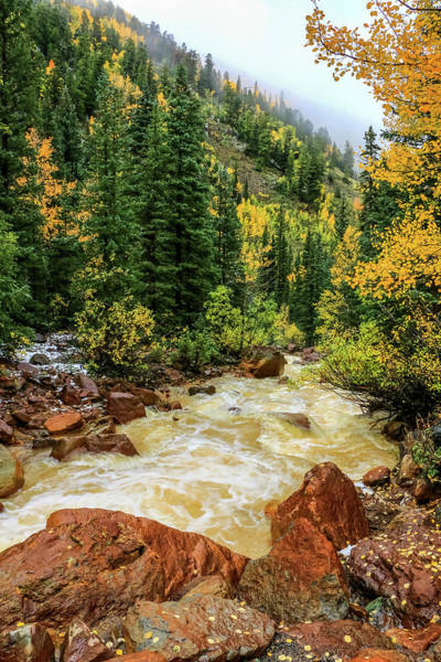 Red Mountain Creek In San Juan Mountains Art Print