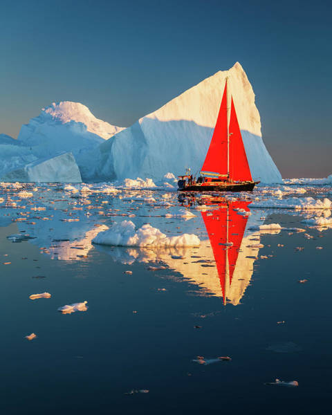 Photograph - Red On White by Michael Blanchette