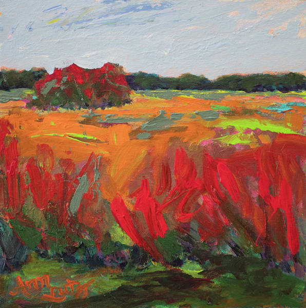 Wall Art - Painting - Red Orange Marsh by Ann Lutz