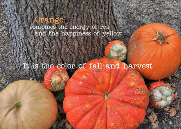 Photograph - Red Orange Quote by JAMART Photography