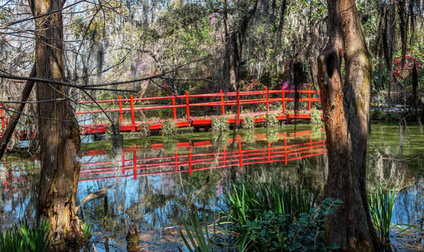 Photograph - Red Path by Susie Weaver