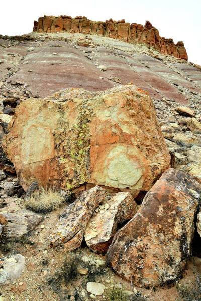 Photograph - Red Point Boulders by Ray Mathis