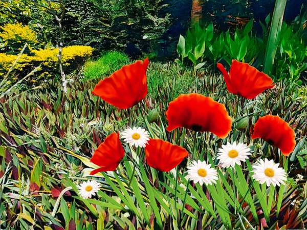 Photograph - Red Poppies by AE collections