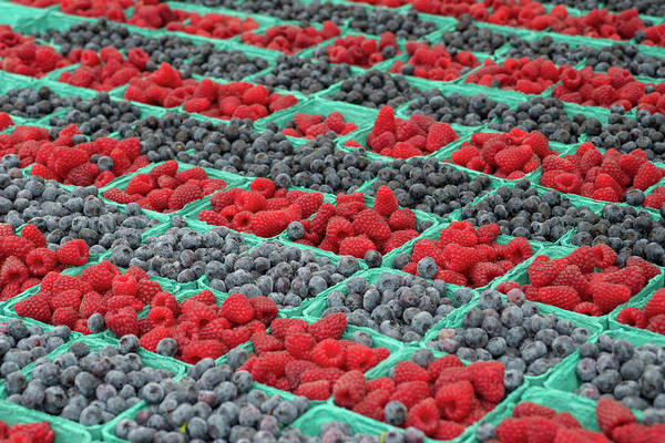 Wall Art - Photograph - Red Raspberries And Blueberries For Sale by John and Lisa Merrill