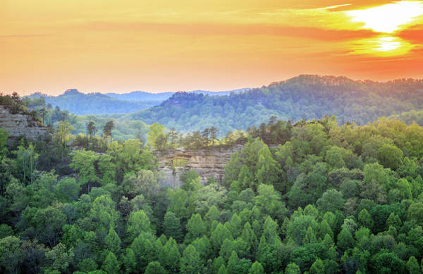 Wall Art - Photograph - Red River Gorge by Alexey Stiop