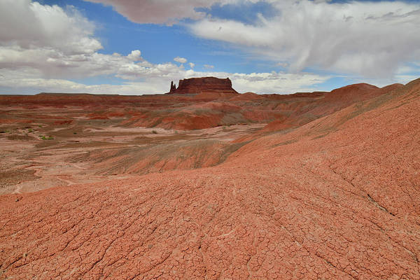 Photograph - Red Rock Desert Dunes Along Highway 191 In Az by Ray Mathis