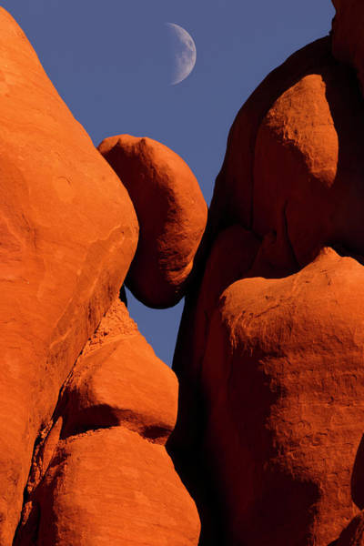 Wall Art - Photograph - Red Rock Formations, And Moon, Blue by Adam Jones