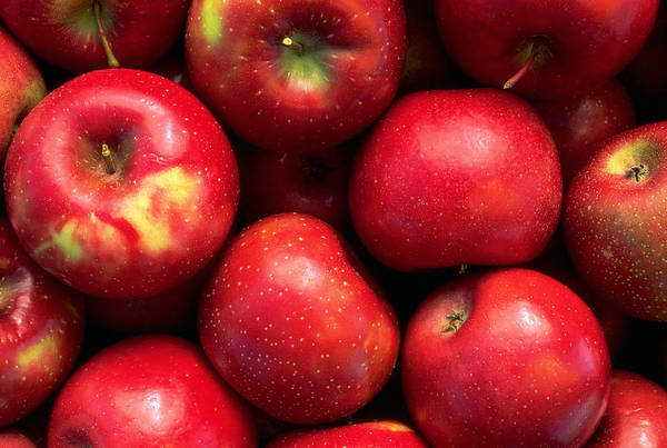 Healthy Eating Photograph - Red Rome Beauty Apples by Inga Spence